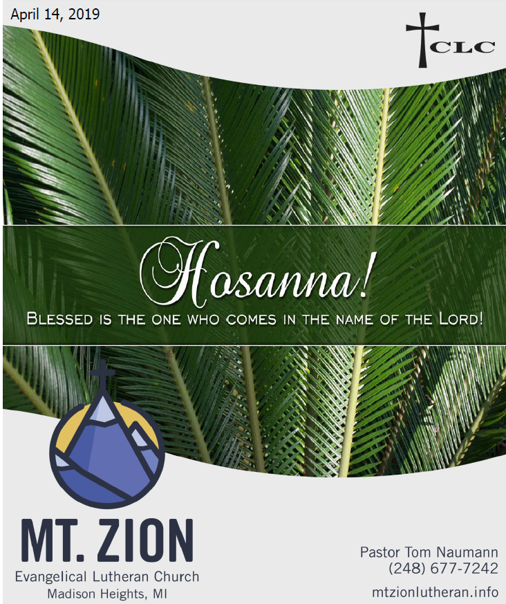 Jesus Truly Serves as King – Palm Sunday