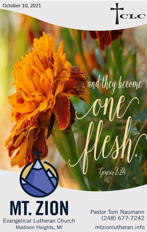 20th Sunday after Pentecost – October 10, 2021